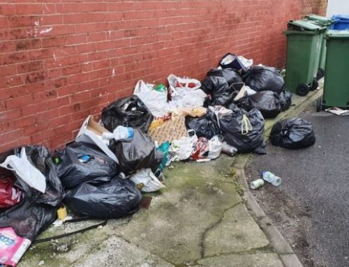 Coronavirus: Fly-tipping rise prompts plea to reopen tips