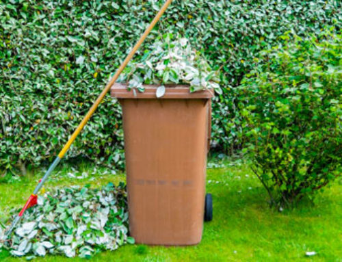 Garden and bulky waste services suspended, local waste sites closed